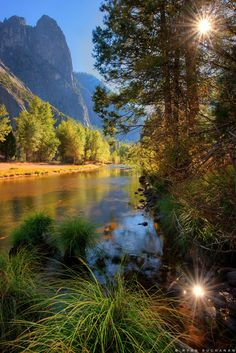 Yosemite National Park.... Yosemite Village, California