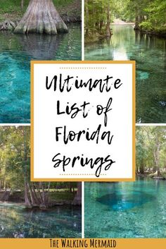 This is the ultimate list of Florida Springs located throughout the entire state of Florida. Springs are one of Florida's most treasured and iconic places to visit. These freshwater springs are absolutely gorgeous with their clear turquoise water and perfect for swimming, kayaking, canoeing, and even diving. Click here to see the full list. #TheWalkingMermaid #Florida #FloridaSprings #FloridaVacation #Kayaking #Canoeing #Diving #FloridaTravel #USATravel #USA Florida Travel Guide, Usa Travel Guide, Florida Vacation, Travel Usa, Travel Guides, Florida Caverns State Park, State Of Florida, Nature Adventure, Adventure Travel