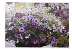 Tuinschilderij Petunia
