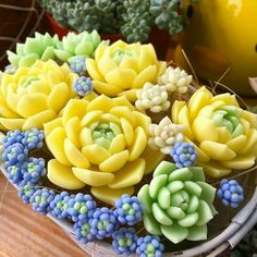 60 Simple Succulent Diy Ideas For You – Cactus