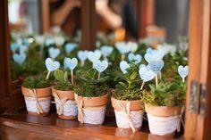 Si amas las plantas, cultivar mudas de plantas como negocio puede ser una buena opción para ti. Vea cómo hacer mudas de plantas para vender y ganar dinero!