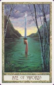 The Ace of Swords. Swords learn through pain. This card represents cutting through illusions to see the heart of the matter.