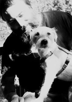 Perkins & jack Russell terrier