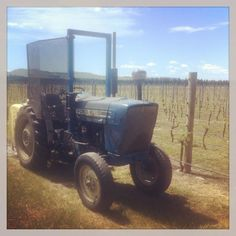 Love the blue Ford at Georges Road wines Wines, Tractors, Monster Trucks, Ford, Vehicles, Blue, Car, Vehicle, Tools