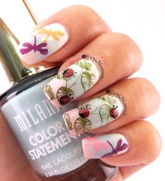 some cute #ladybugs and #dragonflies #nail #stampingnailart