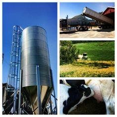 #PostalesAgropecuarias #Agriculture #Cattle #Comparte