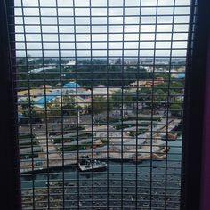 Missing Disneyland even when nayana screamed the whole time we were on this Ferris wheel:) #myhome #disneyland by sammysamsam1