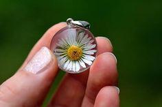 White Daisy Flower Pendant Daisy Resin Pendant Real Flower
