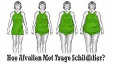 Afvallen met trage schildklier is vaak geen makkelijke opdracht. Mensen met een trage schildklier hebben bijna altijd problemen om een gezond gewicht...