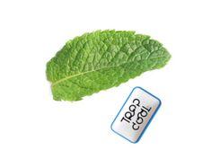 Trop cool la marque du temps Chewing Gum, Plant Leaves, Ethnic Recipes, Bubble Gum, Gumball