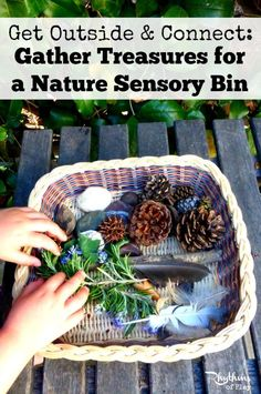 A nature sensory bin is a container or basket filled with items found in nature. You will find that there are many items waiting for you and your child to discover right outside your door. You may not even need to leave your backyard—but I encourage you to search in other areas.