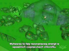 Fotosynteza (faza jasna).