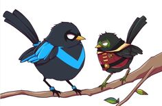 Nightwing and Damian birds ^^