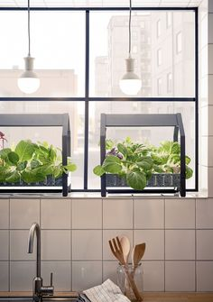 Ikea is taking indoor gardening to the next level with its cool new hydroponic gardening kits.