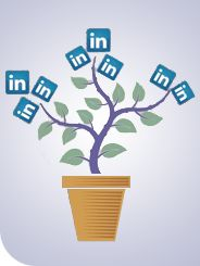 """This article is the """"The Ultimate Recruiter's Guide to LinkedIn"""". The article informs recruiters how to utilize every aspect of LinkedIN to recruit talented individuals. LinkedIn can be a great source of avaliable business professionals that are waiting to be recruited by you. (8017)"""