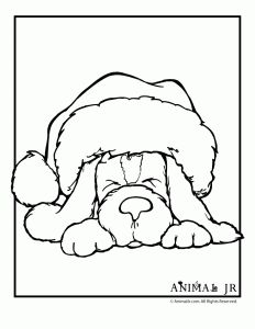 english springer spaniel coloring pages - photo#22