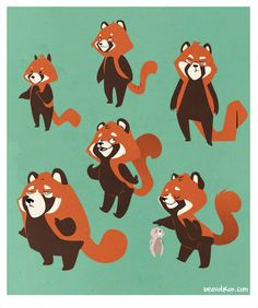 Red Panda Character concepts by ~beavotron on deviantART