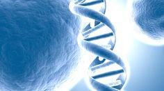 Taboo Biology: Epigenetics