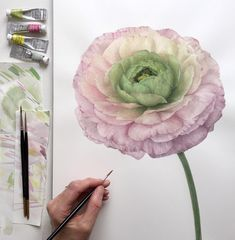 I loved the way this ruffley Ranunculus changed colour towards the centre but it's been a tricky subject and there are things I'd like to change! Wishing you all a wonderful weekend
