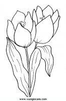 disegni_da_colorare_natura/fiore_fiori/tulipano.JPG