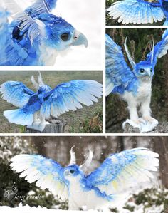 Ice Phoenix by mooki003 on DeviantArt