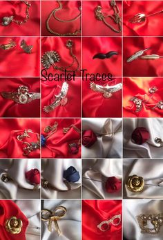 Lapel pins and boaches
