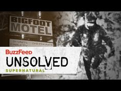 Bigfoot: The Convincing Evidence -  http://www.wahmmo.com/bigfoot-the-convincing-evidence/ -  - WAHMMO