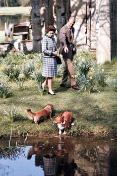 Queen Elizabeth, Prince Phillip and the ever-present corgis.