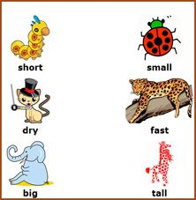 math worksheet : 1000 images about opposites on pinterest  opposites game  : Kindergarten Opposites Worksheet