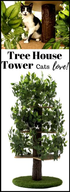 This unique patented product, designed and assembled in the USA, is the only one in the market that allows your feline friend to experience the fun of climbing, stretching, scratching, hiding or simply napping on a tree. #catfurniture #cattree #catcondo #catproducts #largecatfurniture #cattreehouse #affiliate