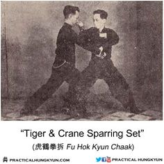 Tiger Crane Sparring Set - rare vintage photo from Lam Sai Wing Memorial Book Chinese Martial Arts, Martial Arts Workout, Meiji Era, Martial Artists, Kung Fu, Black Belt, Crane, Vintage Photos, Mindset