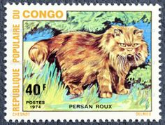 Postage stamp with the image of the cat — Stock Photo © Андрей ...