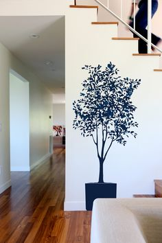 olive tree wall decal...for those who simply cannot keep plants alive or think it looks cool.