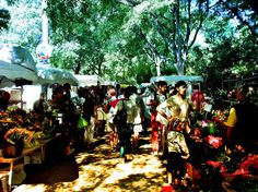 Saturday Market in Arles, France France, Marketing, Travel, Viajes, Traveling, French, Trips, Tourism