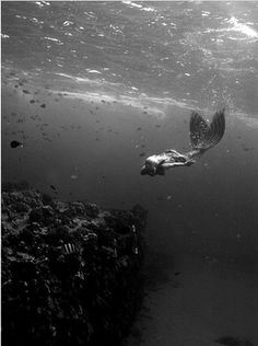 Mermaid at heart <3