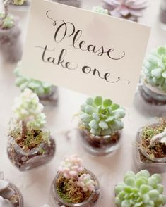 """The bride and groom at this Colorado wedding wanted to give their 41 guests something living to take home. """"I thought succulents would be perfect,"""" says Sarah. She and her husband Jordan spent the months leading up to the big day collecting glass containers. Their florist filled them with the small plants just a couple of days before."""