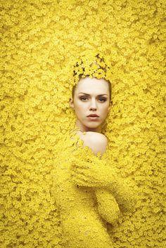 Flowers – Studio Lucette | pixteur  CHC mag - photographer: Studio Lucette - 90% CGI - 10% Post Production