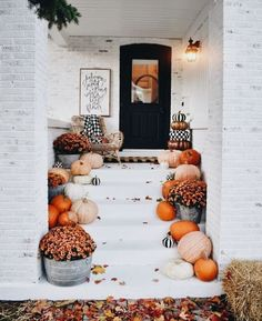 Amazon Farmhouse Fall Decor under $40!
