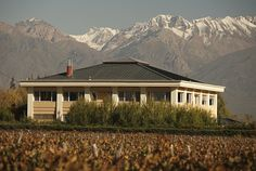 Bodega #Antucura (Vista Flores, #Mendoza)