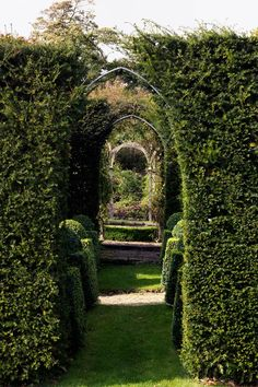 Hidden nooks, ravishing views - this Cotswolds garden is a topiary dream world. See more garden design ideas on HOUSE - design, food and travel by House & Garden.