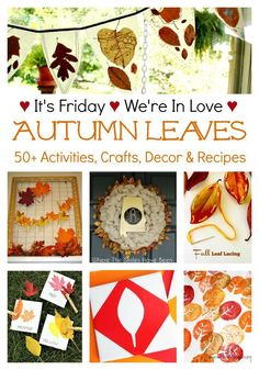 It's Friday, We're In Love with Autumn Leaves... don't miss our featured favorites and 50+ autumn leaf activities, kids crafts, DIY, decor & recipes in our weekly link-up!