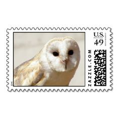 Snowy Barn Owl Postage Stamp online after you search a lot for where to buyDeals          Snowy Barn Owl Postage Stamp Review from Associated Store with this Deal...