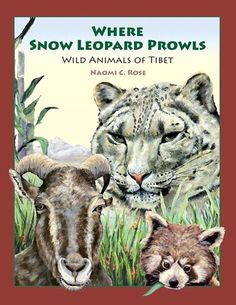 WHERE SNOW LEOPARD PROWLS (Finalist for the 2014 International Book Award) - Our new children's book, Where Snow Leopard Prowls, is the product of author Naomi C. Rose's passion for the wildlife of Tibet and the outpouring of support from wildlife supporters like you!  Dozens of snow leopard lovers from all over the world have contributed to the funding this beautiful and educational children' book through a Kickstarter campaign.