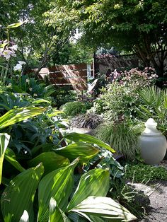 Entry to the back yard  // Great Gardens & Ideas //