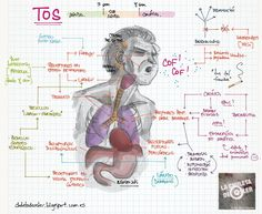La Chuleta de Osler: Neumología / ORL - Causas de tos