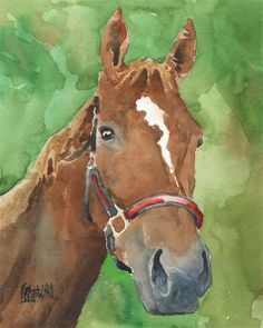 Nosey Horse 11x14 signed art PRINT from painting RJK