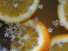 Elderflower Cordial. Elderflowers, orange slices, and honey or sugar sweetened sparkling water.