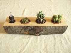 Sun Boat - portapiante in legno
