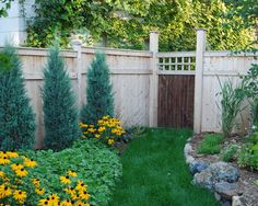 Graduated Wooden Fence Starting Small 4 Feet In The Front Side Yard