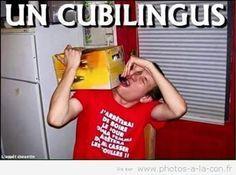 image drole cubi